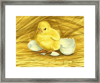 Chick Framed Print by Veronica Minozzi