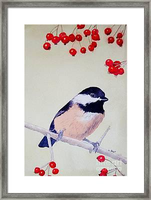 Chickadee Framed Print by Laurel Best