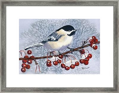 Chickadee Framed Print by Marsha Elliott