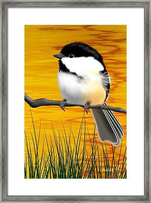 Chickadee On A Branch Framed Print by John Wills