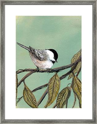 Framed Print featuring the painting Chickadee Set 10 - Bird 1 by Kathleen McDermott