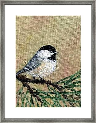 Chickadee Set 17 Bird 1 Detail Print Framed Print by Kathleen McDermott
