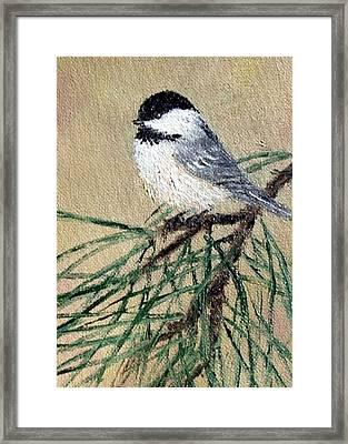 Chickadee Set 17 Bird 2 Detail Print Framed Print by Kathleen McDermott