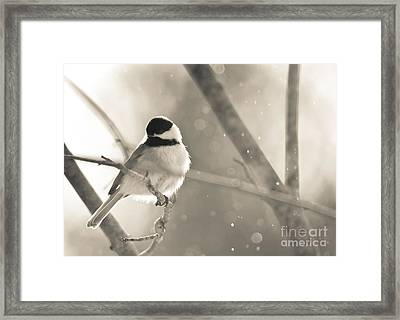 Chickadee Sparkles Framed Print