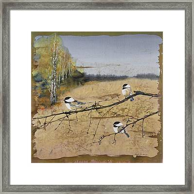 Chickadees And A Row Of Birch Trees Framed Print