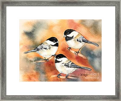 Chickadees Trio Framed Print