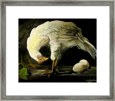 Chicken And Eggs Framed Print