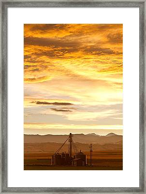 Chicken Farm Sunset 1 Framed Print by James BO  Insogna
