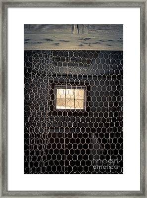 Chicken Wire On A Door Of An Old Chicken Coop Framed Print