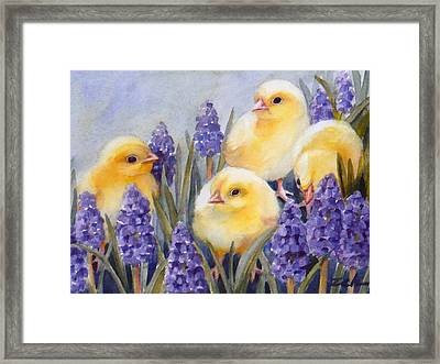Chicks Among The Hyacinth Framed Print