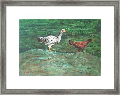 Chicks Framed Print by Usha Shantharam