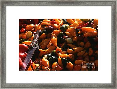 Chiclayo Peppers #2 Framed Print