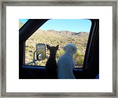Chico And Ceaser Framed Print