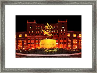 Chief Osceola And Renegade Unconquered Framed Print