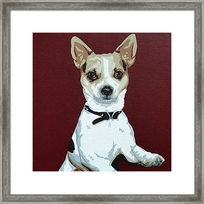Chihuahua 2 Framed Print by Slade Roberts