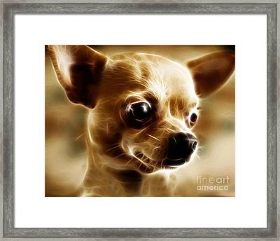 Chihuahua Dog - Electric Framed Print by Wingsdomain Art and Photography