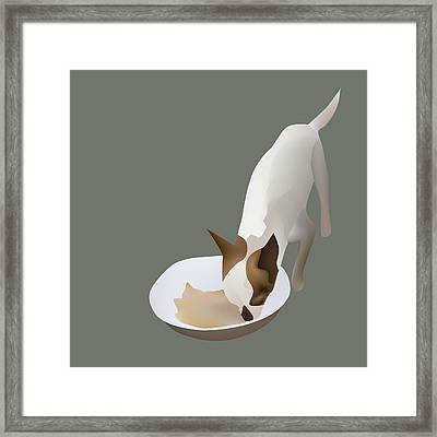 Chihuahua Eating Framed Print by Suphatthra China