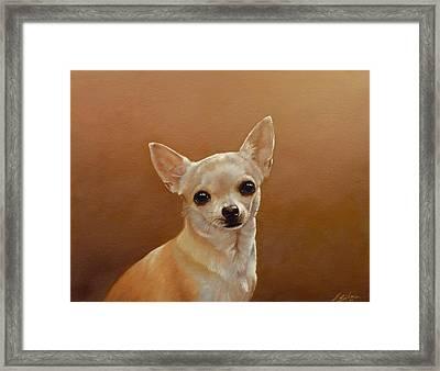 Chihuahua I Framed Print by John Silver