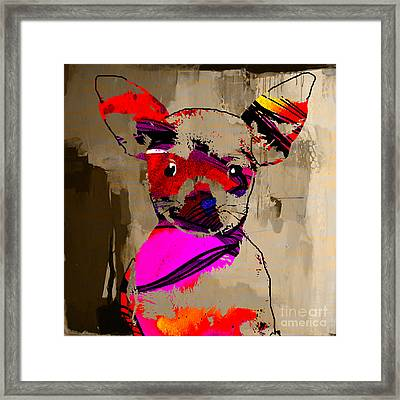Chihuahua Framed Print by Marvin Blaine