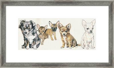 Chihuahua Puppies Framed Print