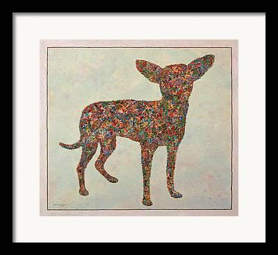 Chihuahua Drawings Framed Prints