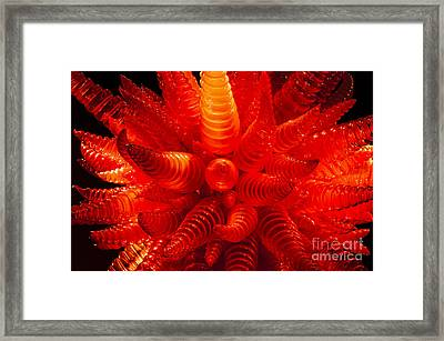 Chihuly Glass 2 Framed Print