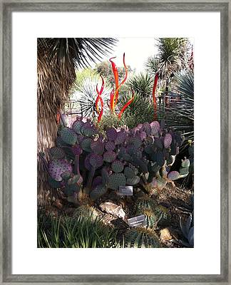 Chihuly Glass In Cactus Framed Print by Jack Edson Adams