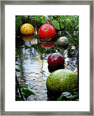 Chihuly Globes Framed Print by Laurel Talabere
