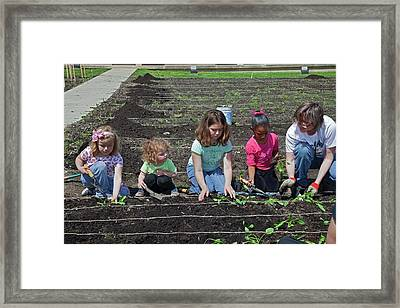 Children At Work In A Community Garden Framed Print