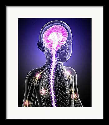 Ulnar Nerves Framed Prints