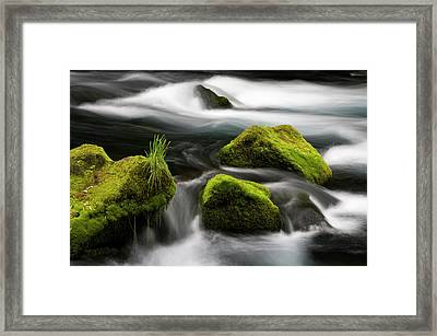 Chile South America Moss-covered Framed Print