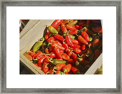 Chili Peppers At Maine Farmers Market Photograph Framed Print by Keith Webber Jr