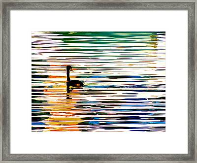 Chillin' Framed Print by Brian D Meredith