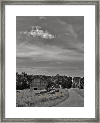 Chillin On A Dirt Road Framed Print by Anthony Thomas