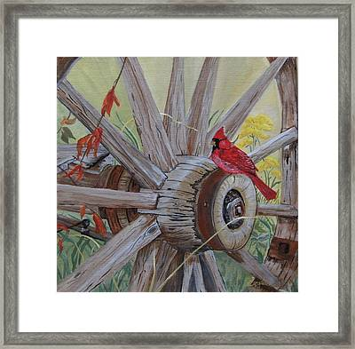 Chillin On The Hub Framed Print by Connie Rowsell