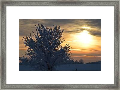 Chilly Sunrise Framed Print