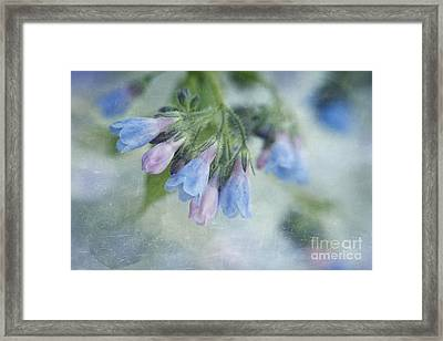 Chiming Bells Part II Framed Print