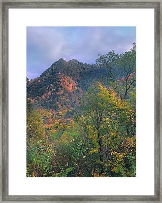Chimney Tops, Great Smokey Mountains Framed Print
