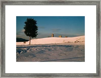 Chimneys And Tree Framed Print by David Fiske