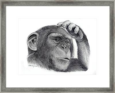 Chimp Framed Print by Mary Mayes
