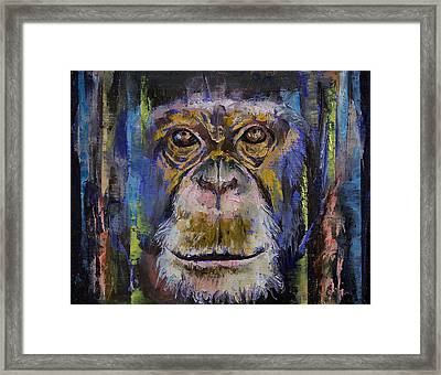 Chimpanzee Framed Print by Michael Creese