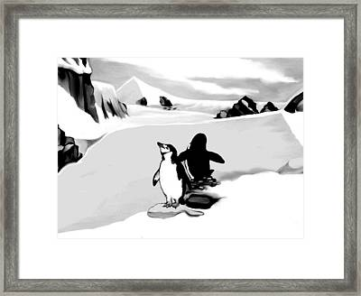 Chin Strap Penguins Framed Print