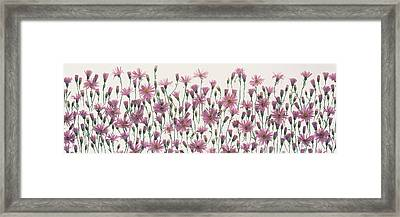 China Asters Framed Print by Panoramic Images