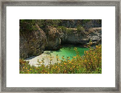 China Cove And Beach, Point Lobos State Framed Print by Michel Hersen