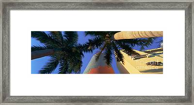 China Grill Framed Print