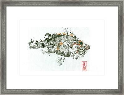 China Rockfish Gyotaku Framed Print
