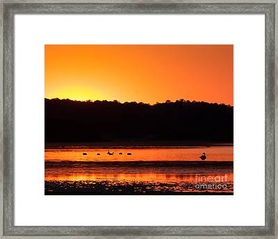 Framed Print featuring the photograph Chincoteague Sunset by Dale Nelson