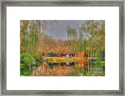 Chineese Garden Framed Print