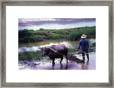 Chinese Farmer 1981 Framed Print