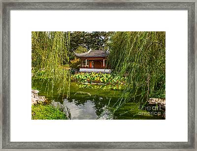 Chinese Garden Breeze Framed Print by Jamie Pham